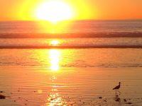sunset3_500